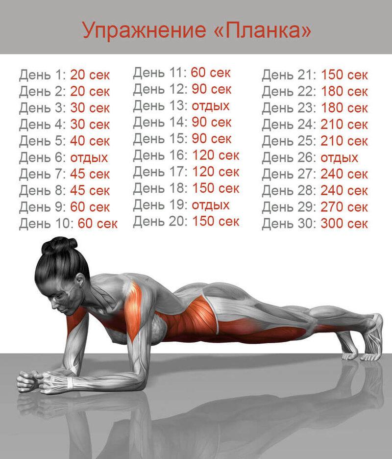 сколько упражнений в одной тренировке узнать хочу