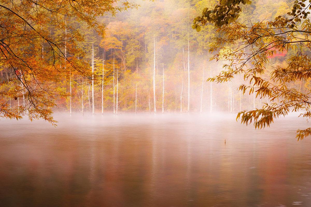 Туман над рекой осенней порой.