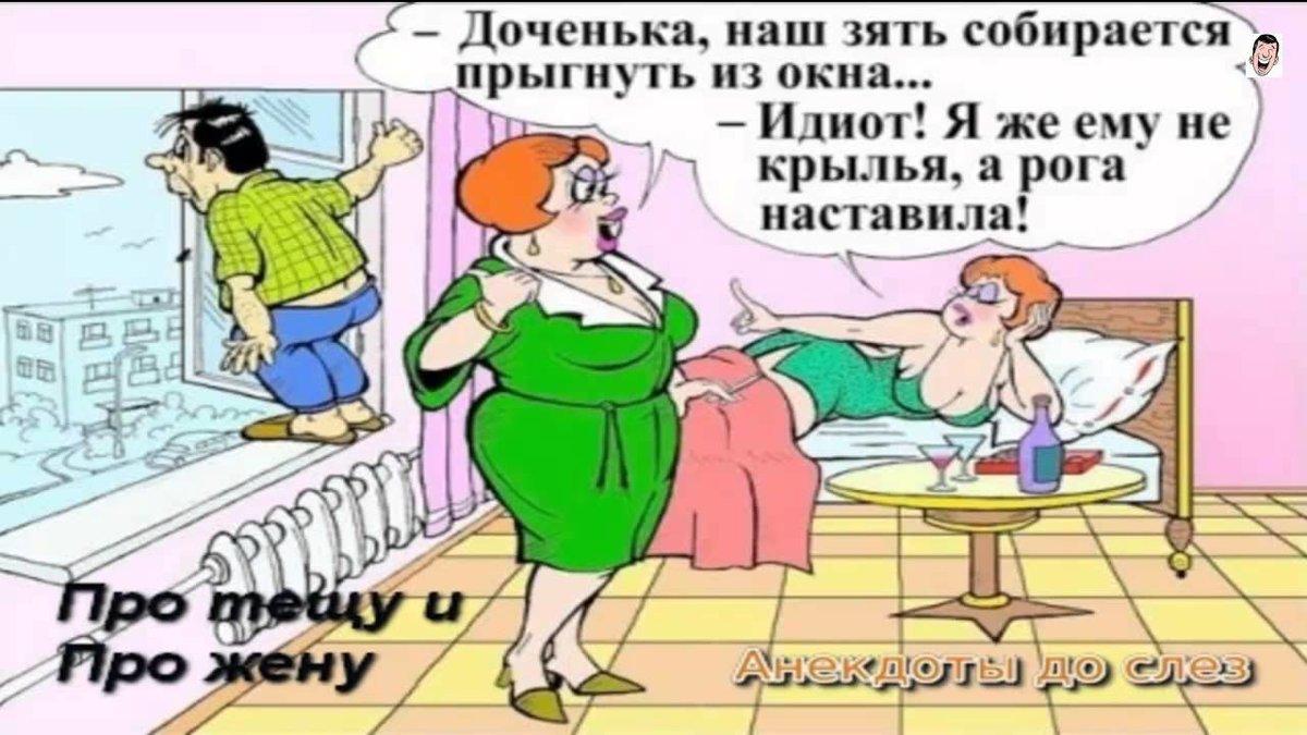 Смешные анекдоты короткие с картинками с женой, картинки мужчинам февраля