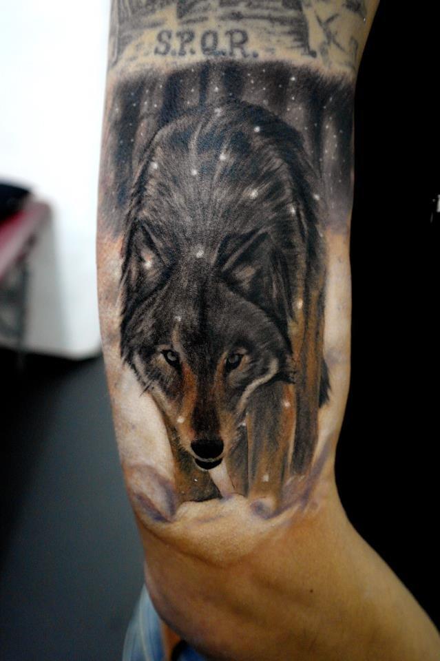утверждала что фото тату идущий волк реальной службы