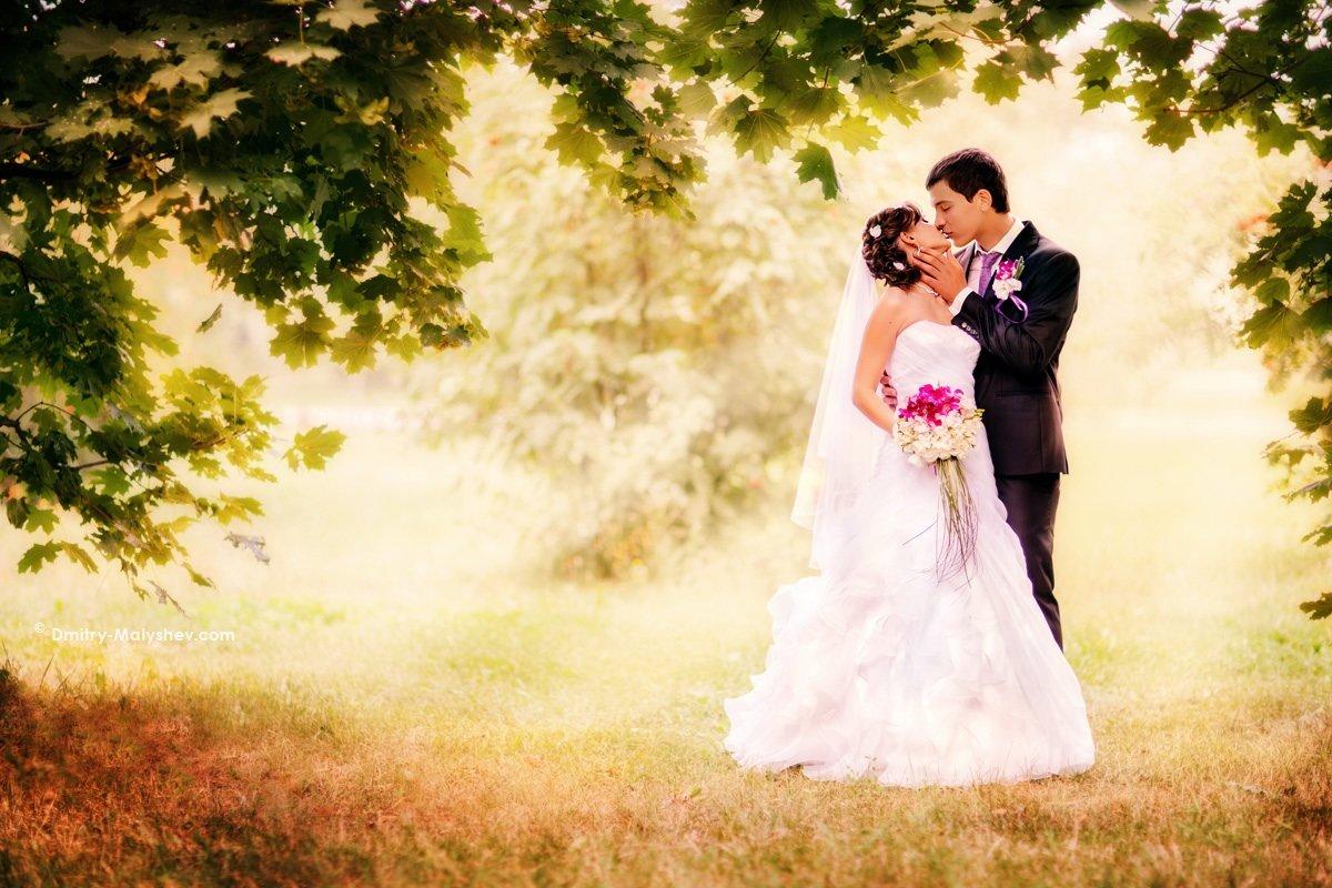 Угощениями, картинки фон для свадебных фото