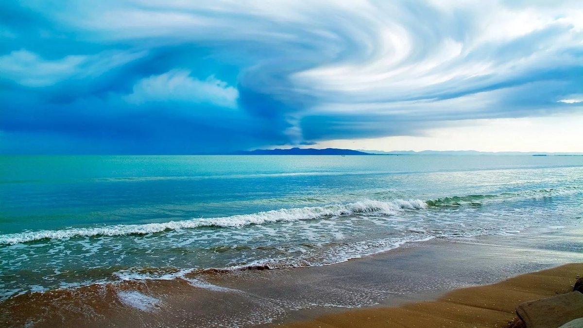 Гифы моря