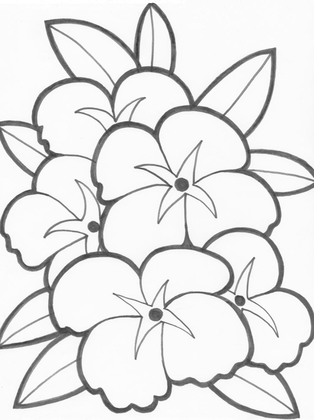 цветы раскраска картинка