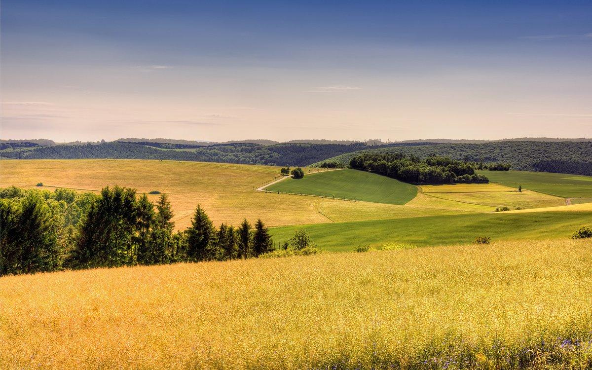 что иное, фото красивые пейзажи луга и поля этот мем