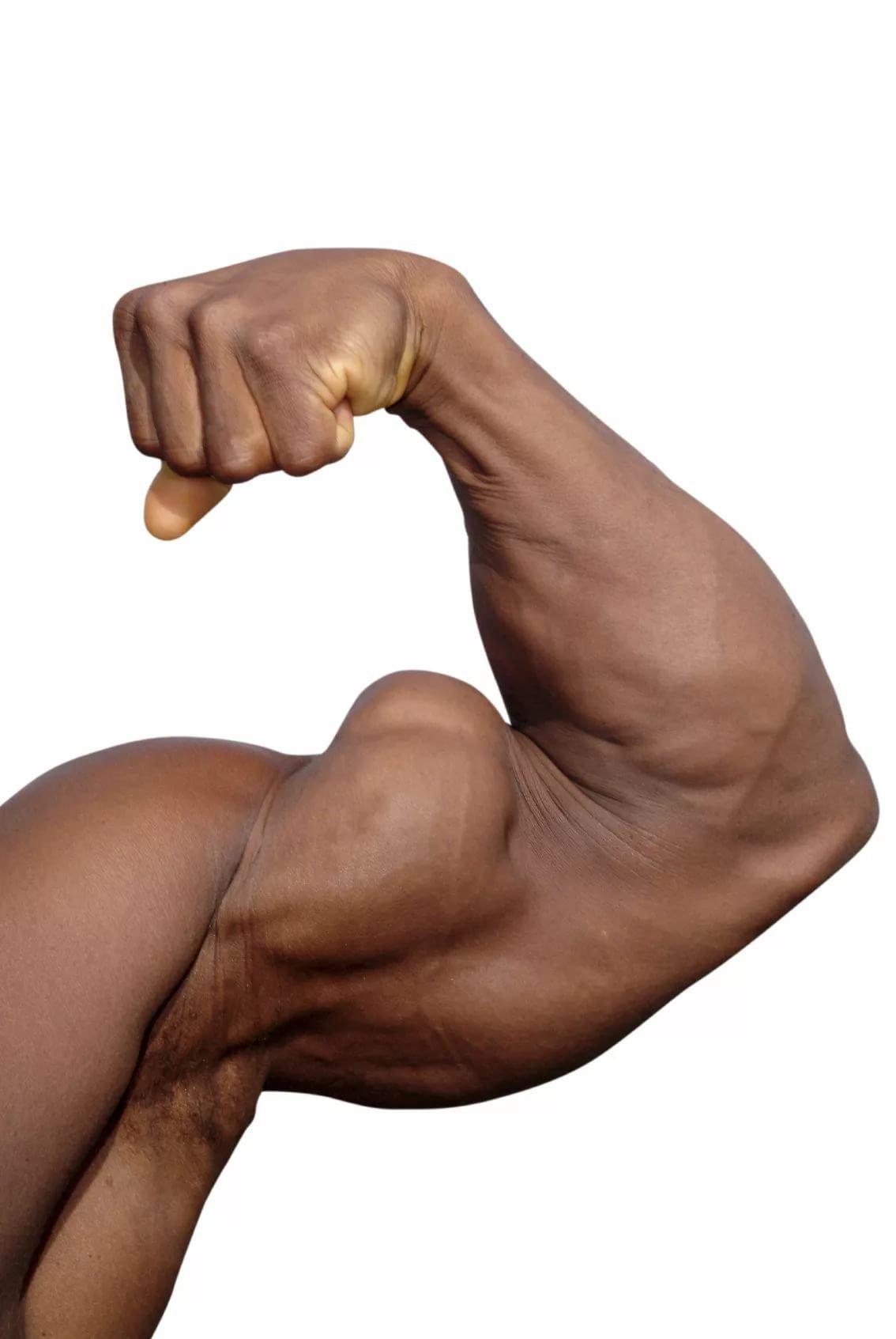 Картинки на мускулы