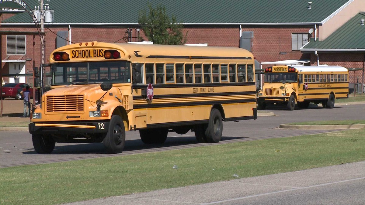School bus chicks movies, fucking men in the ass