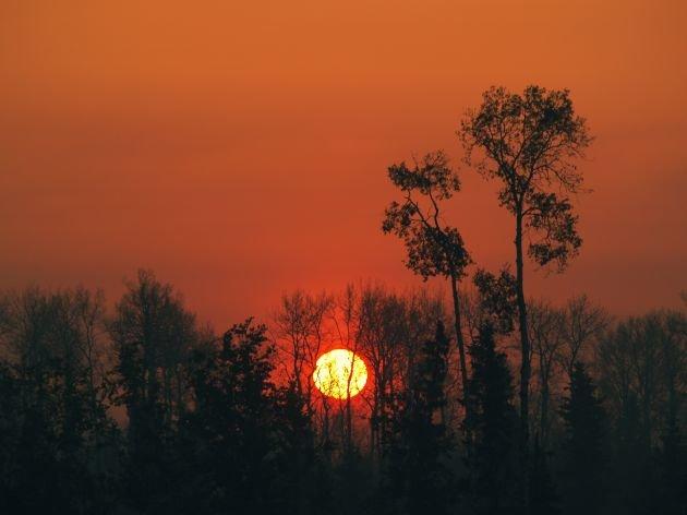 красивый закат в лесушик