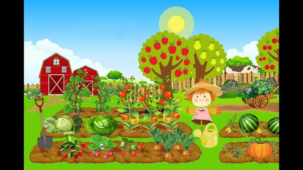 Овощи на картинках для грядок для детей