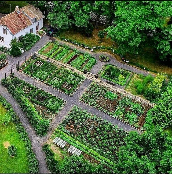 Планирование сада и огорода с фото