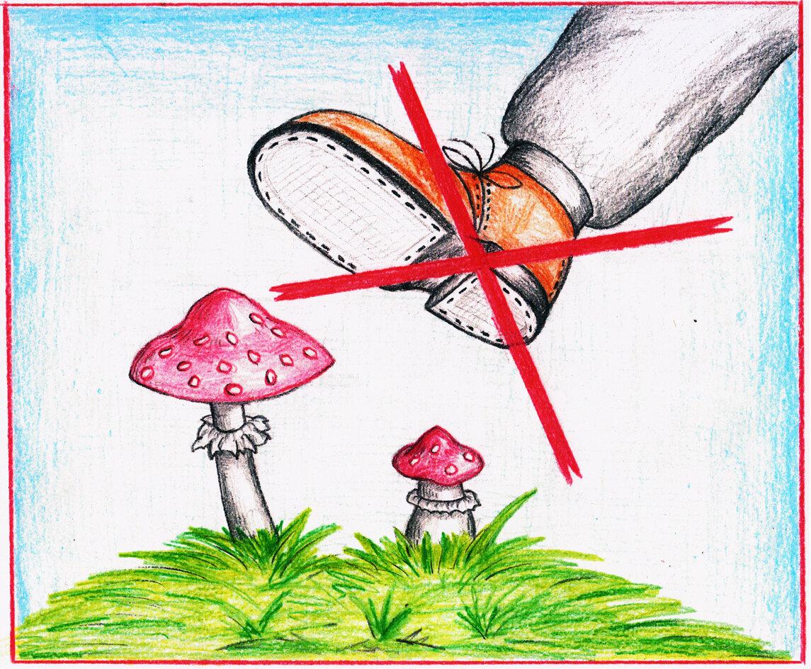 опубликовать плакат берегите растения картинки вышивке