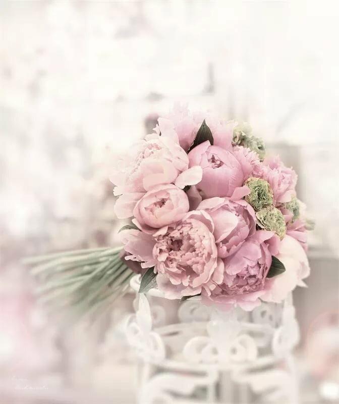 открытка с нежно розовыми цветами