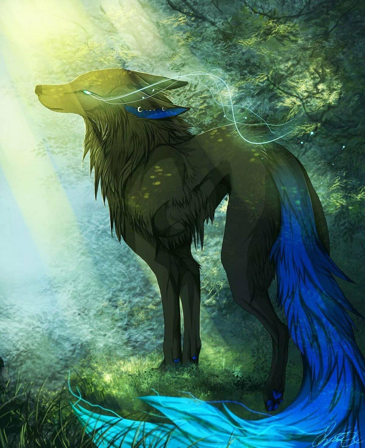 большие картинки волшебных волков на аву того