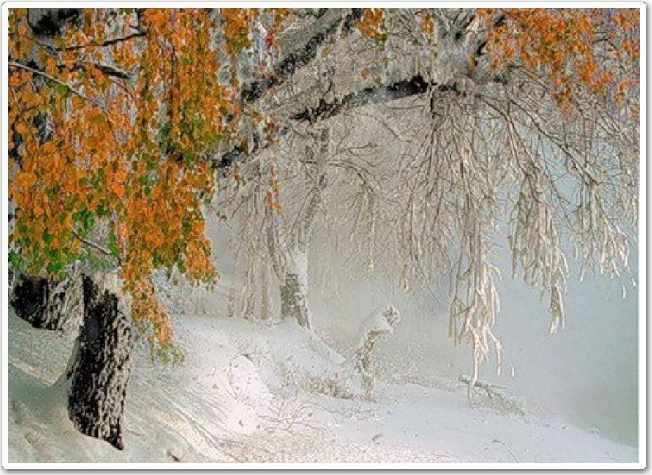 Картинки гиф осень встретилась с зимой