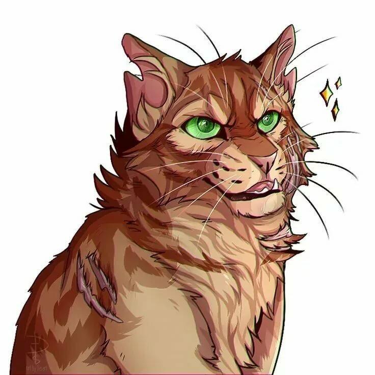 Картинки котов воителей вербовейная