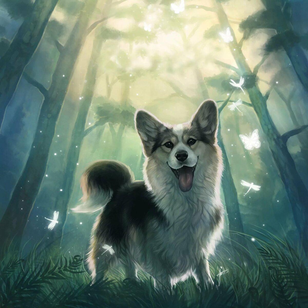 Картинки собак волшебных