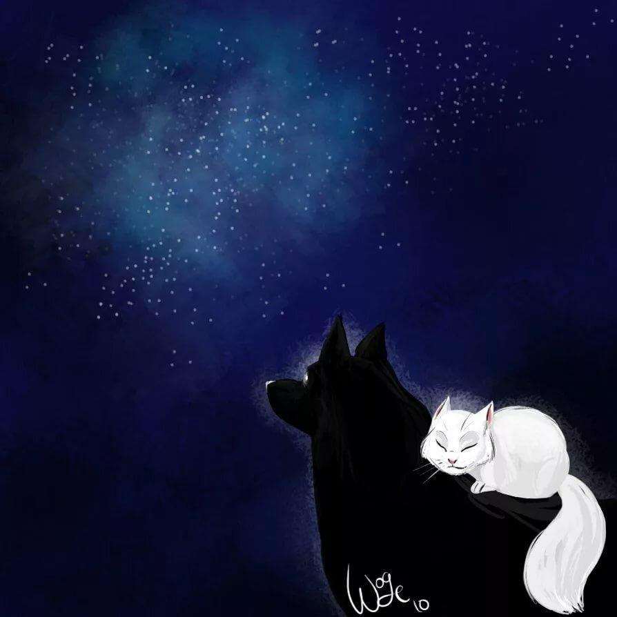 картинки с волками и котятами