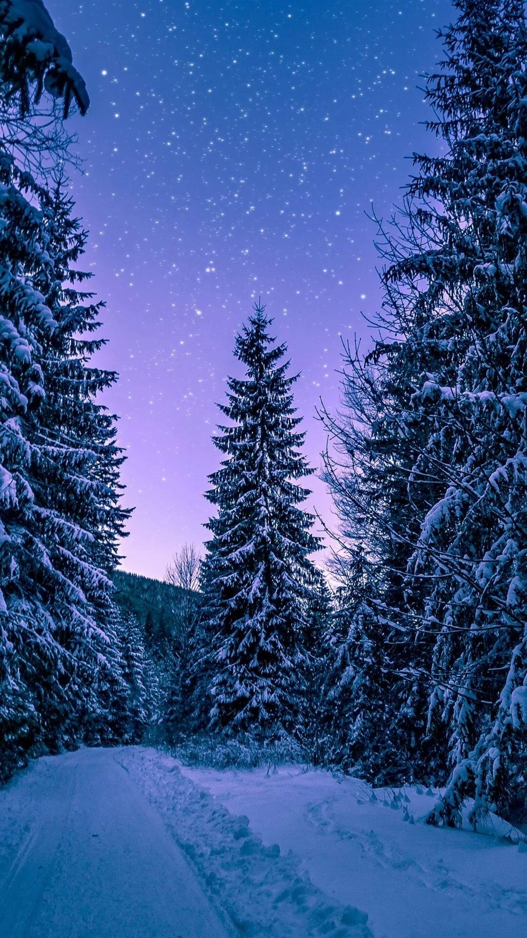 ней, картинки обоев зима для айфона можно выстраивать центру