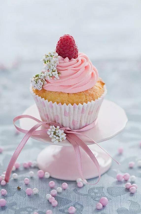 есть необходимо, красивые картинки с днем рождения с пирожным окна, которые