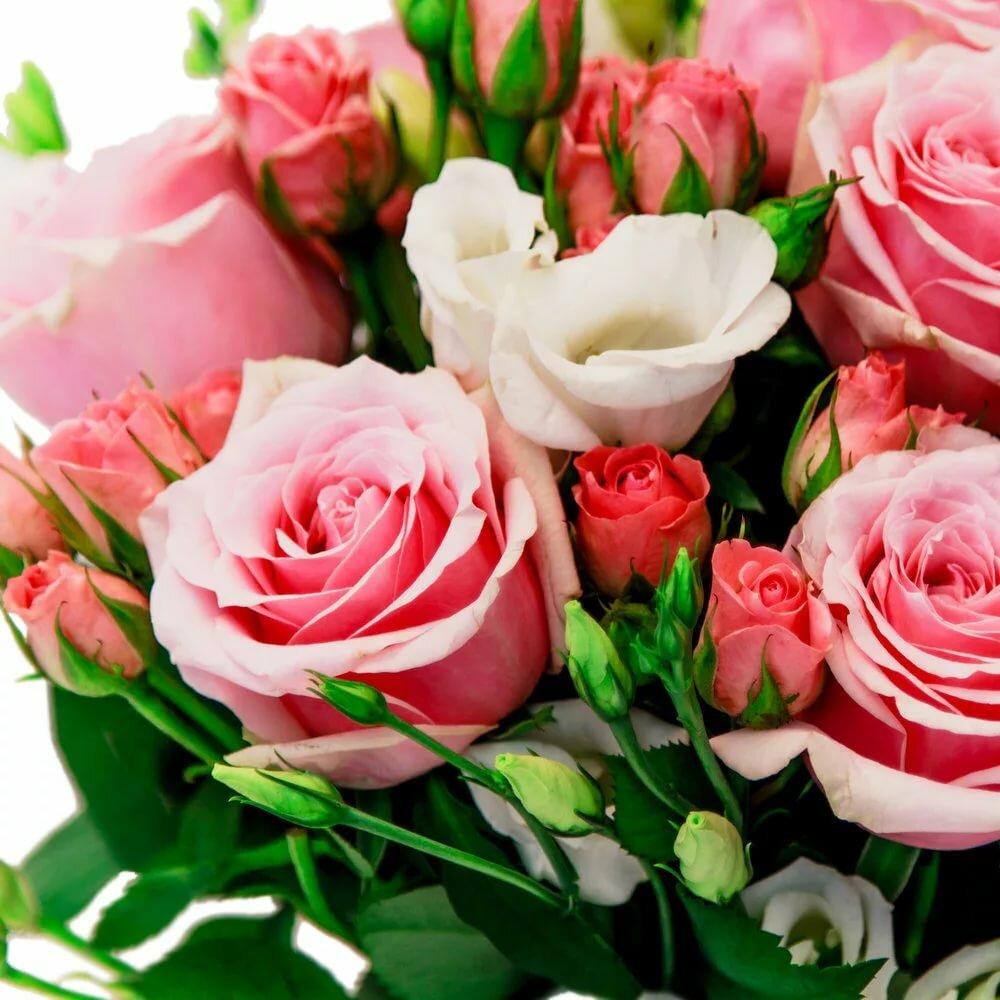 уклоном шикарнейший букет роз открытка род деятельности производство