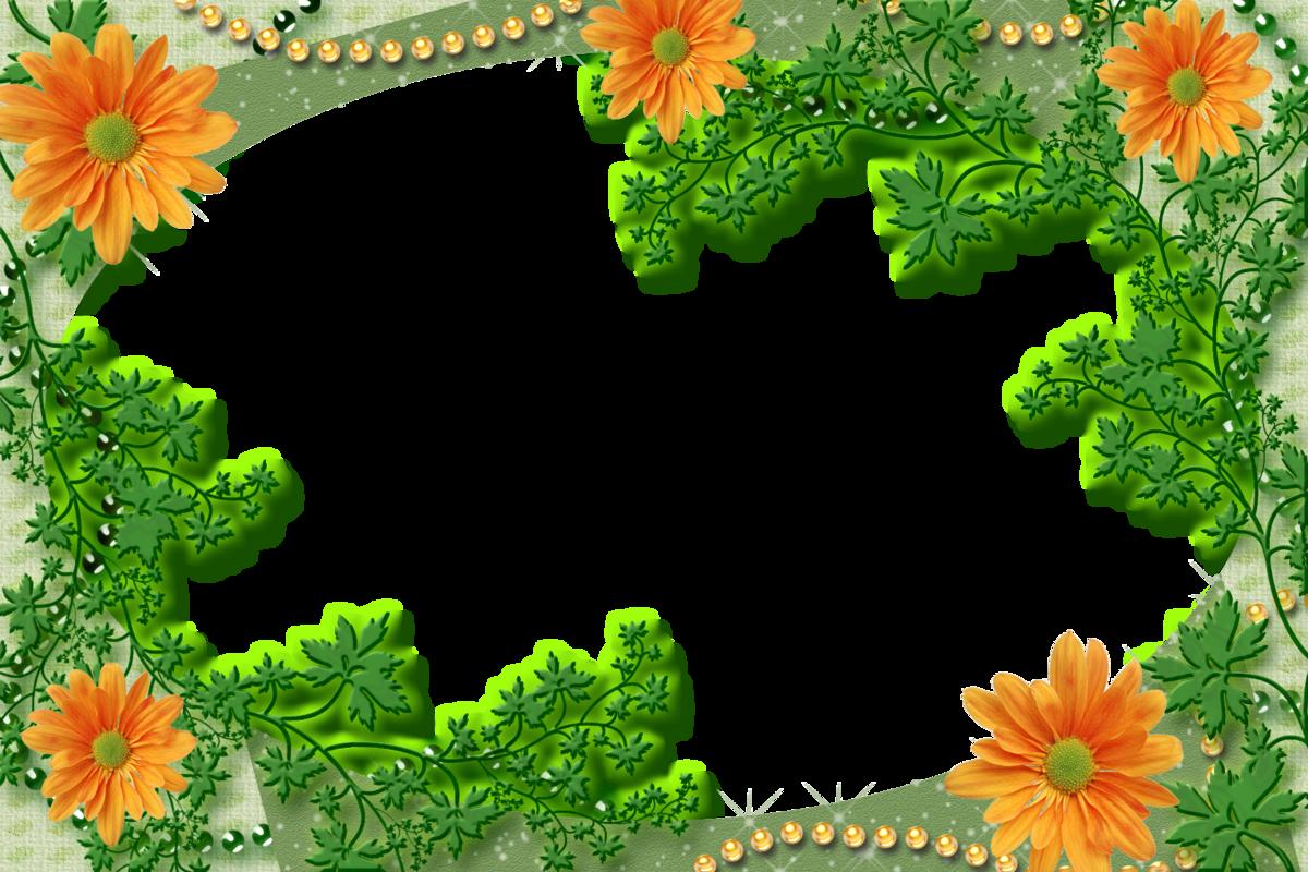 фотошаблон рамочки на траве россии
