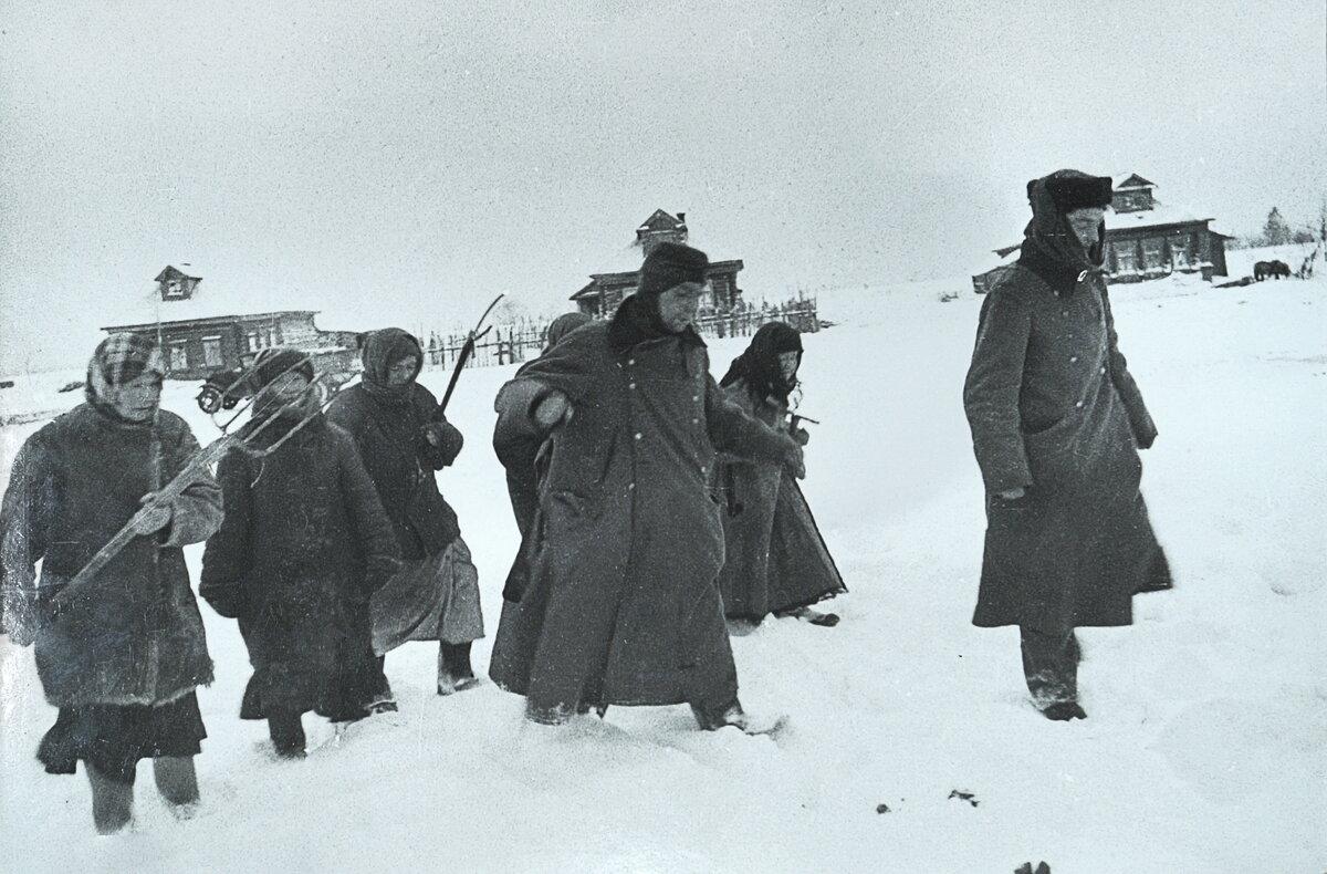 пленные немцы, битва под Москвой