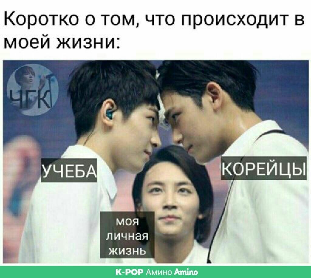 Пин от пользователя Диана Магомедова на доске K-pop ✨ ❤ Мемы