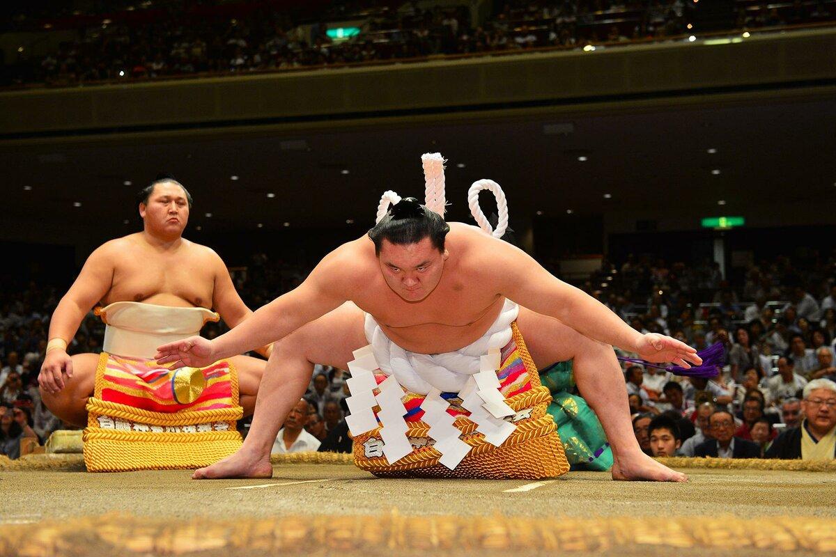 сумоисты японии фото ему его команде