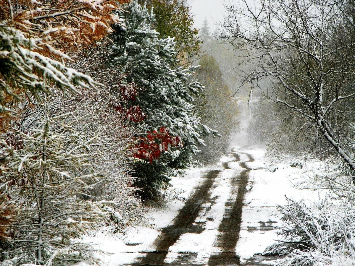 Картинка первого снега