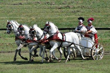 колесница квадрига лошади