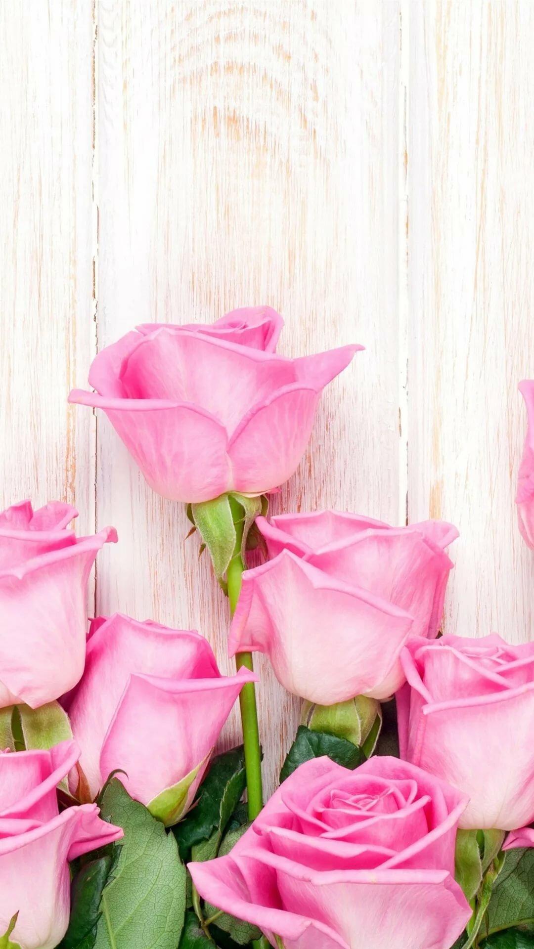 Обои На Телефон Вертикальные Розы