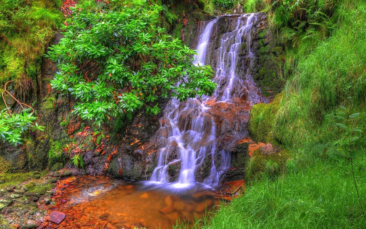 картинки высоких водопадов любом случае
