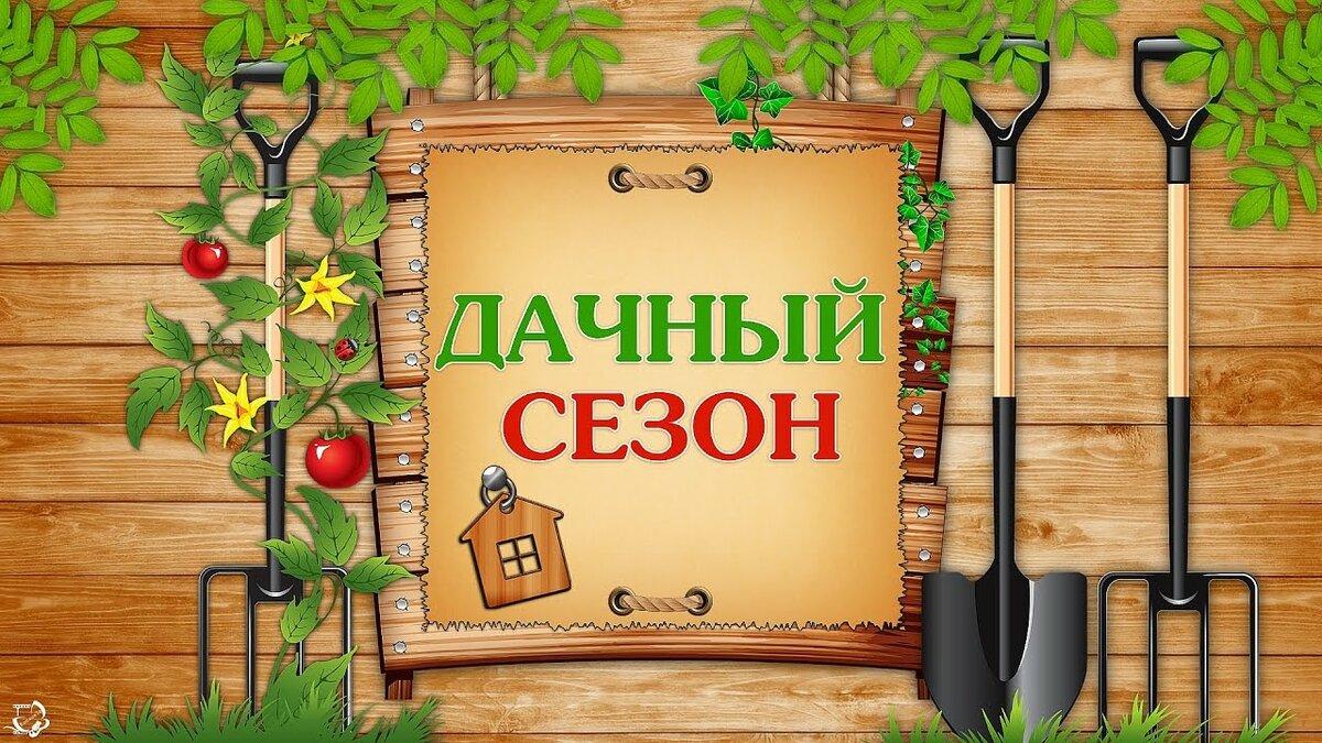 Поздравление открытке, открытки для огородника