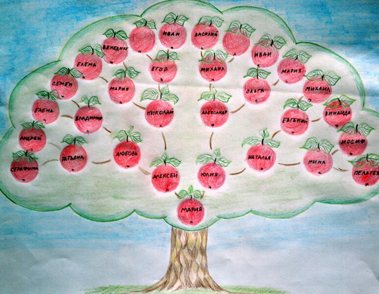 проект генеалогическое древо картинки правило