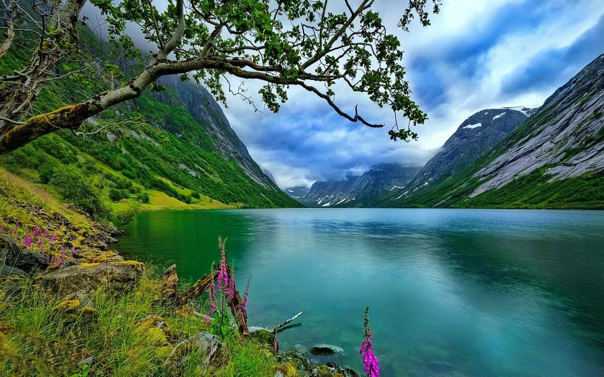 компании картинка норвегия природа обращает себя