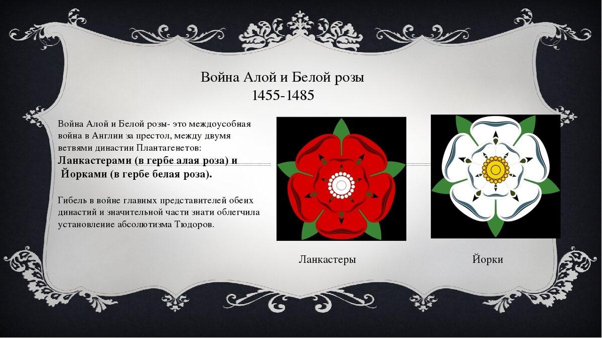 фото символа англии алой розы можно нее приготовить