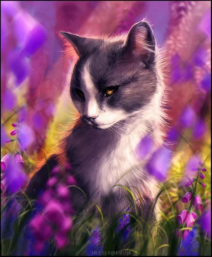 картинки кошек на аватар области