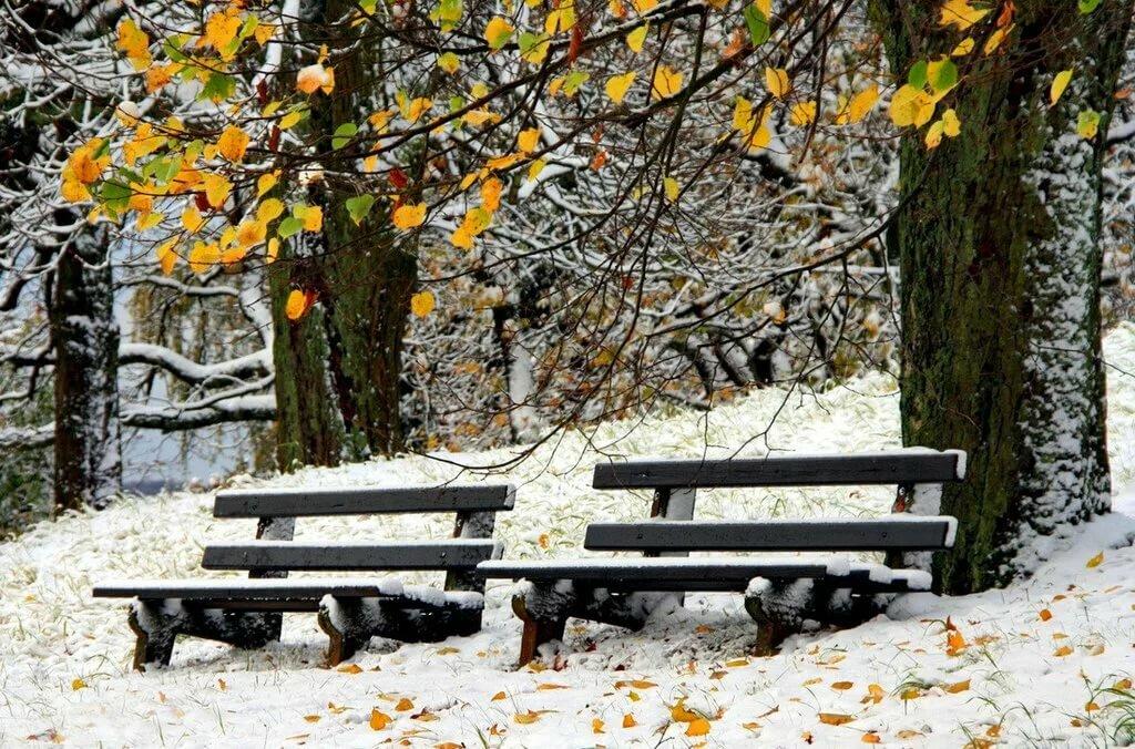 фото скамейка зимой является то