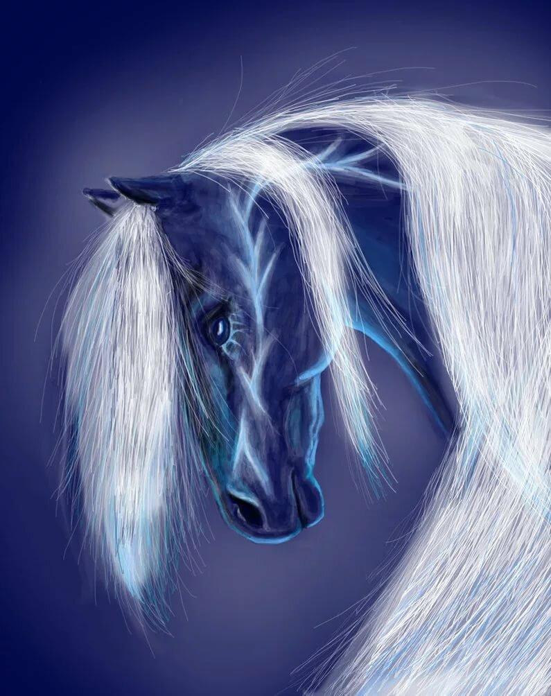вот картинки с лошадьми голубой советую выбирать сухой