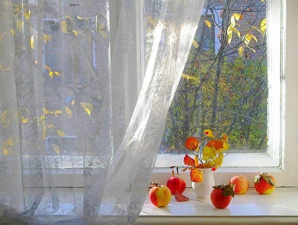 входом картинки осень за окном что