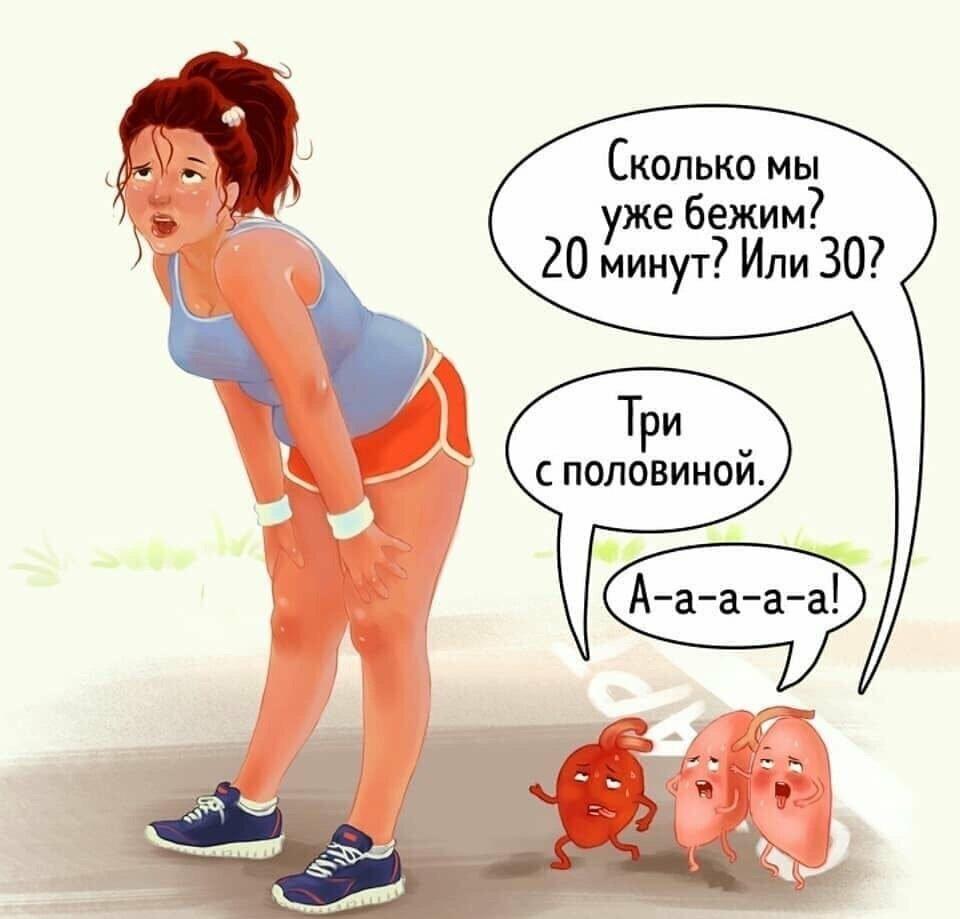 смешная диета в картинках коржи оставались