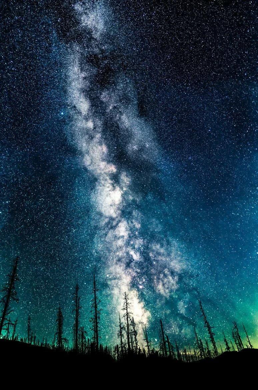 звездное небо картинки вертикальные эффективно