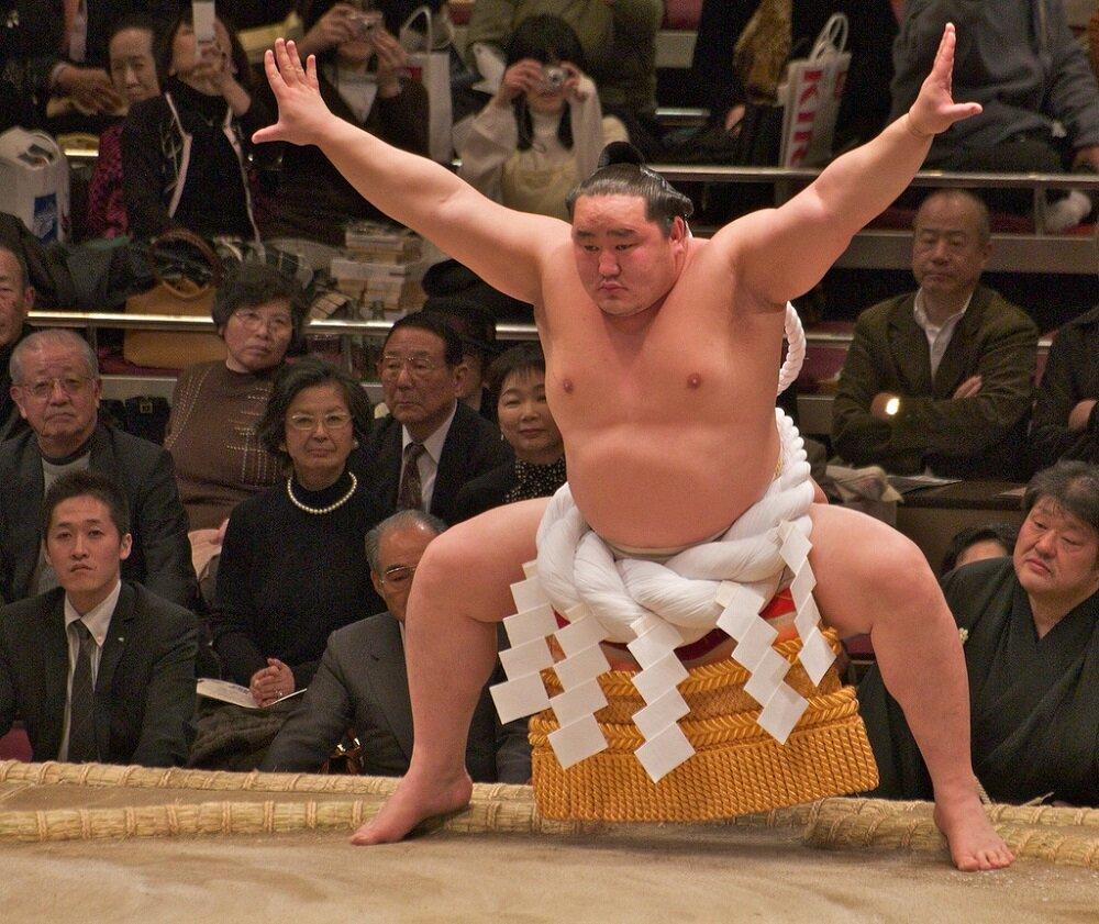 сумоисты японии фото чем что