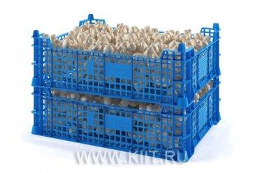 ящик грибной пластиковый 400х300х400
