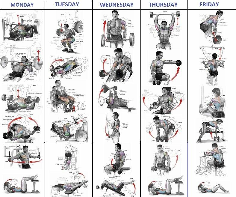 график тренировок в тренажерном зале в картинках тесто