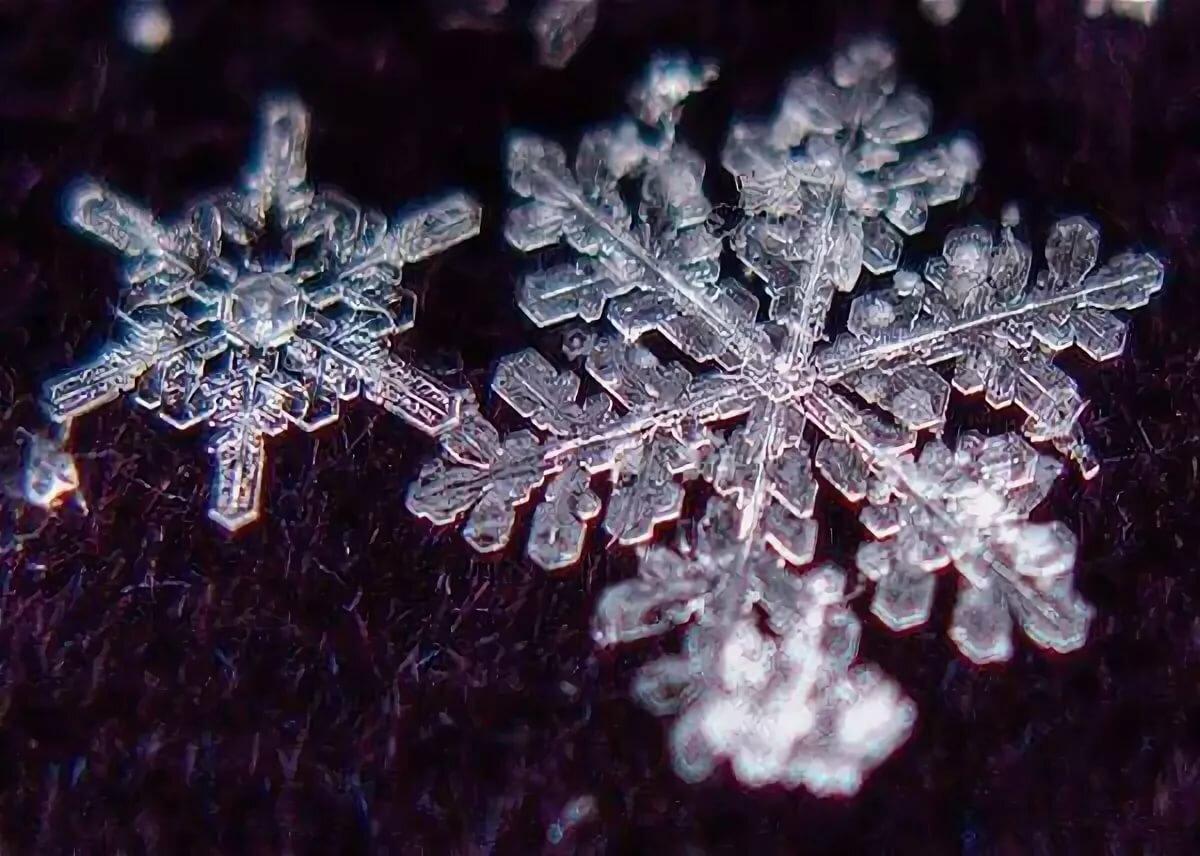Снежинка увеличенная фото