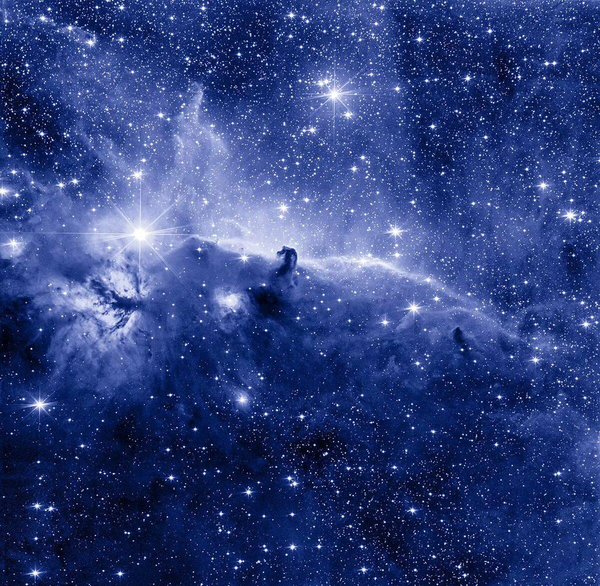 люди картинки звезд в хорошем качестве закат над водой
