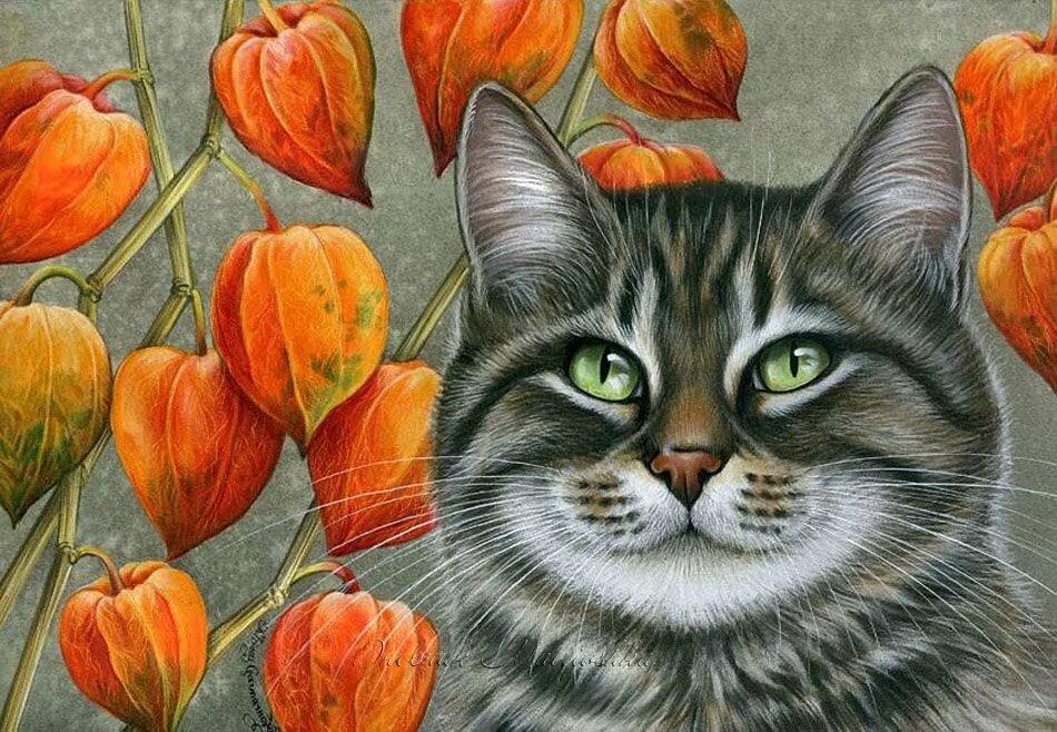 изображение котов картинки для