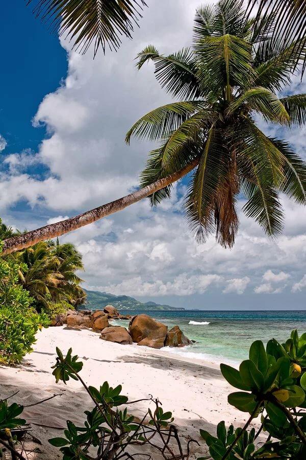 фото острова баунти движущиеся