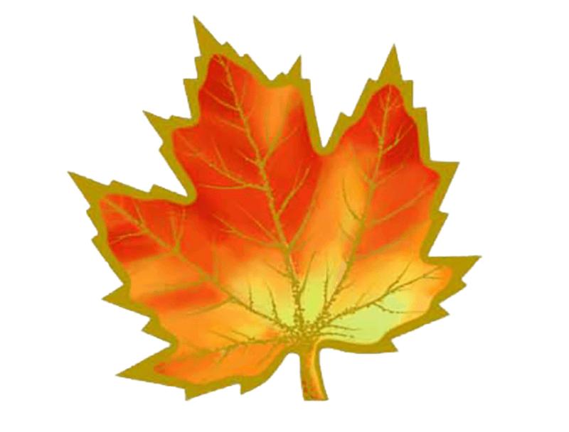 Открытки кленовый листа