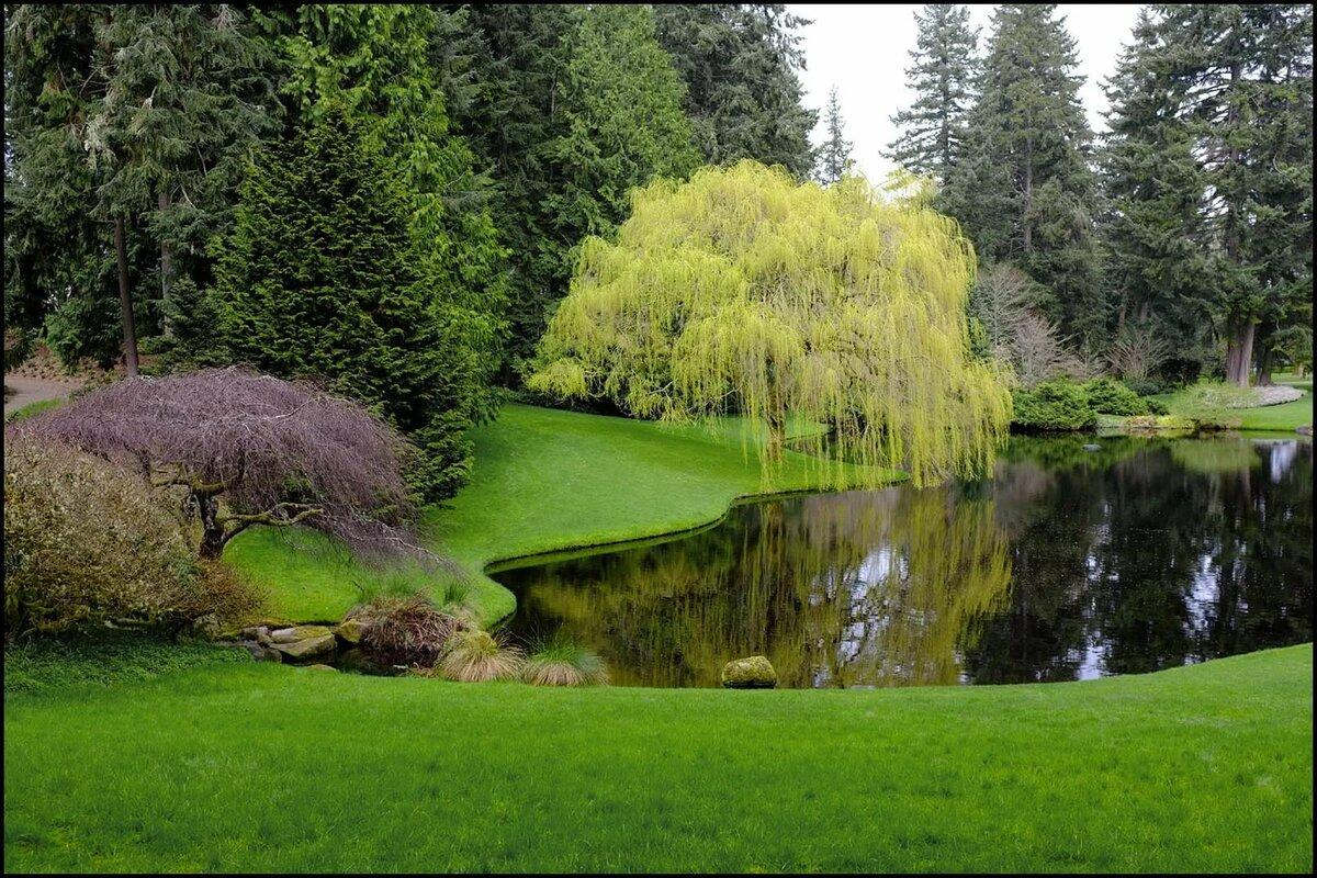 для картинки вид сада с озером джоли является поклонницей